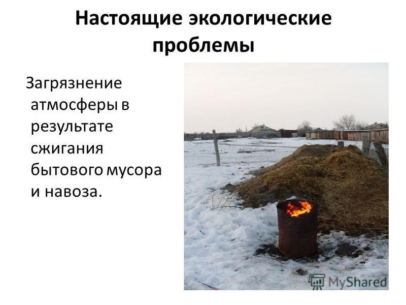 Настоящие экологические проблемы Загрязнение атмосферы в результате сжигания бытового мусора и навоза.