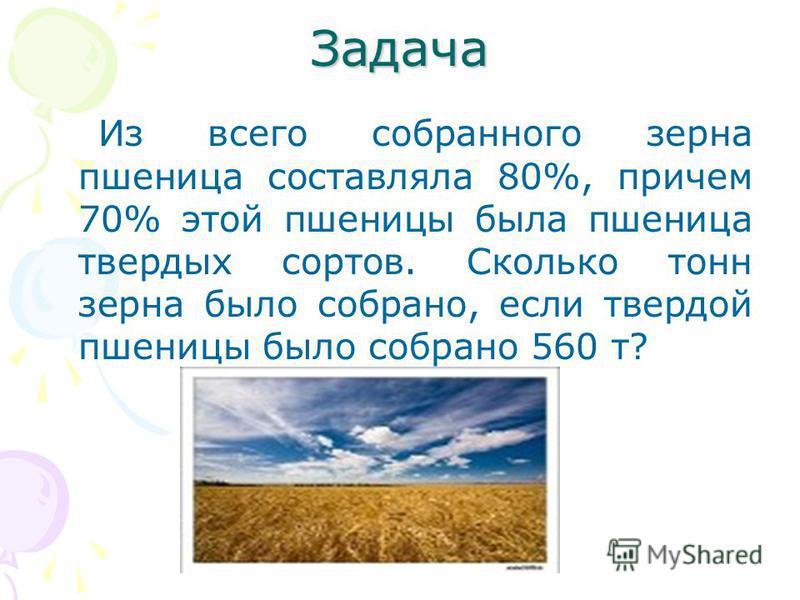 Задача Из всего собранного зерна пшеница составляла 80%, причем 70% этой пшеницы была пшеница твердых сортов. Сколько тонн зерна было собрано, если твердой пшеницы было собрано 560 т?
