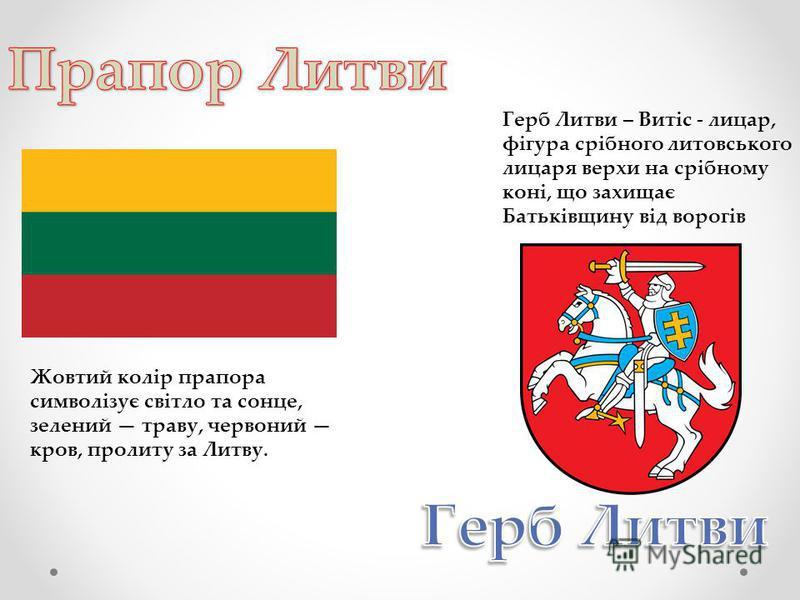 Жовтий колір прапора символізує світло та сонце, зелений траву, червоний кров, пролиту за Литву. Герб Литви – Витіс - лицар, фігура срібного литовського лицаря верхи на срібному коні, що захищає Батьківщину від ворогів