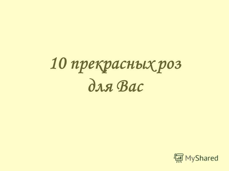 10 прекрасных роз для Вас