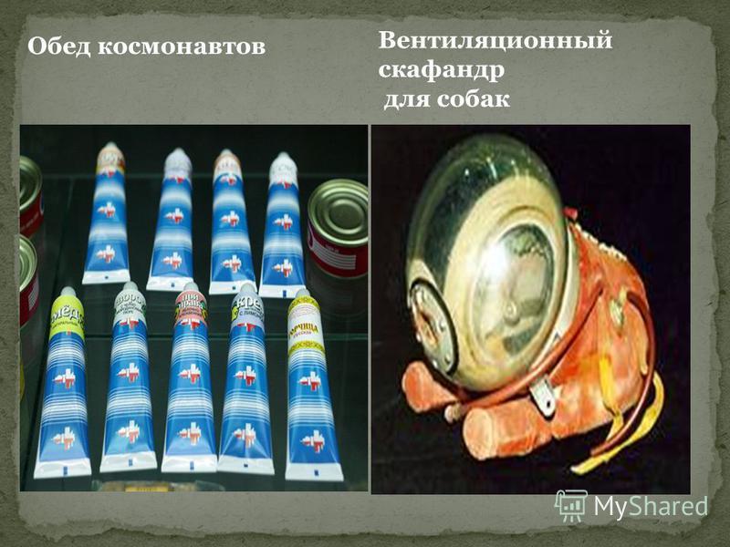 Вентиляционный скафандр для собак Обед космонавтов