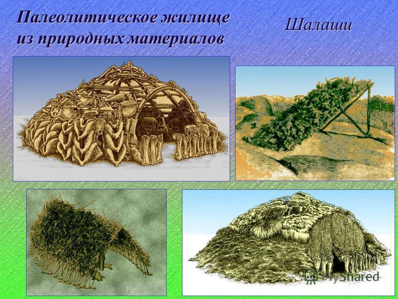 Палеолитическое жилище из природных материалов Шалаши