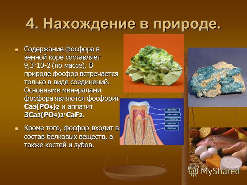 4. Нахождение в природе. Содержание фосфора в земной коре составляет 9,3·10-2 (по массе). В природе фосфор встречается только в виде соединений. Основными минералами фосфора являются фосфорит Ca 3 (PO 4 ) 2 и апатит 3Ca 3 (PO 4 ) 2 ·CaF 2. Содержание