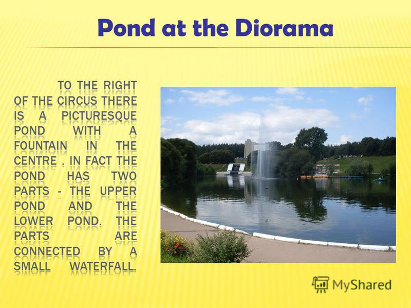 Pond at the Diorama