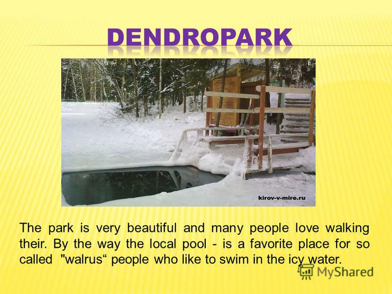 The park is very beautiful and many people love walking their. By the way the local pool - is a favorite place for so called walrus people who like to swim in the icy water.