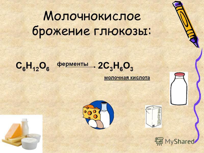 C 6 H 12 O 6 ферменты 2C 3 H 6 O 3 молочная кислота Молочнокислое брожение глюкозы: