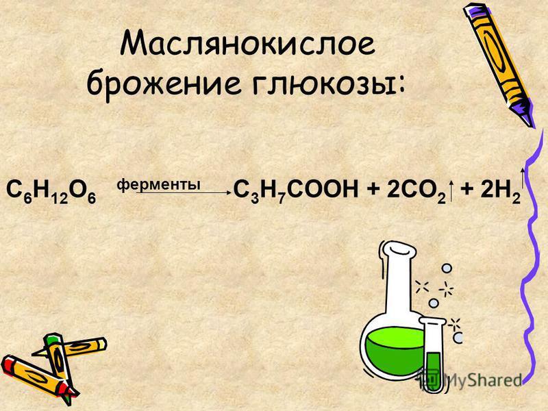 C 6 H 12 O 6 ферменты C 3 H 7 COOH + 2CO 2 + 2H 2 Маслянокислое брожение глюкозы: