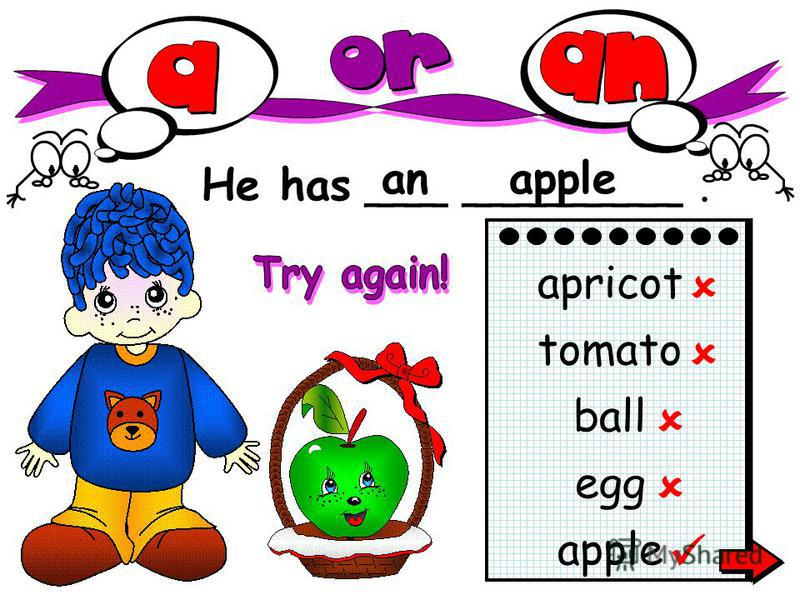 He has ___ ________. anapple apricot tomato ball egg