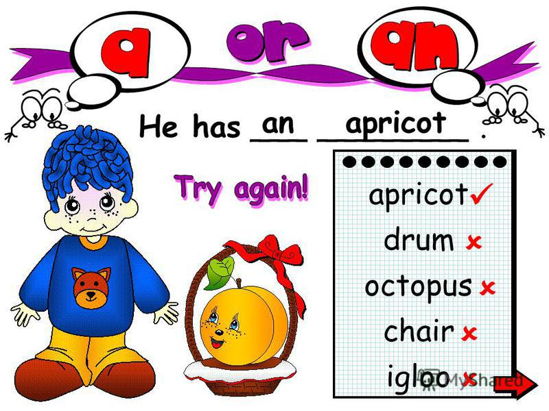 He has ___ ________. anapricot igloo apricot drum octopus chair