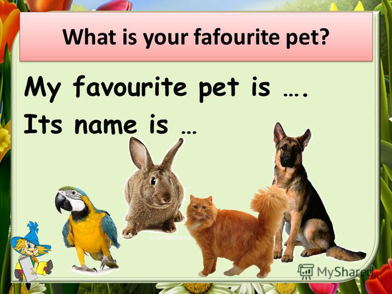 My favourite pet is …. Its name is …