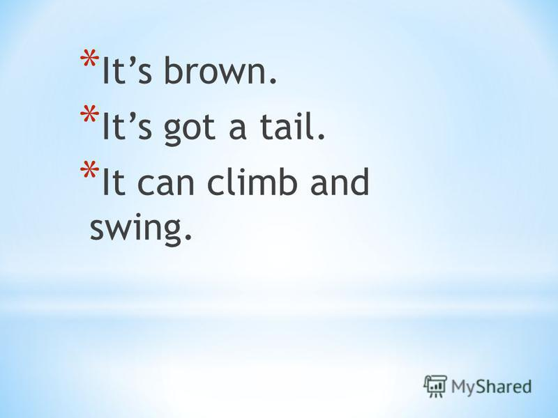 * Its brown. * Its got a tail. * It can climb and swing.