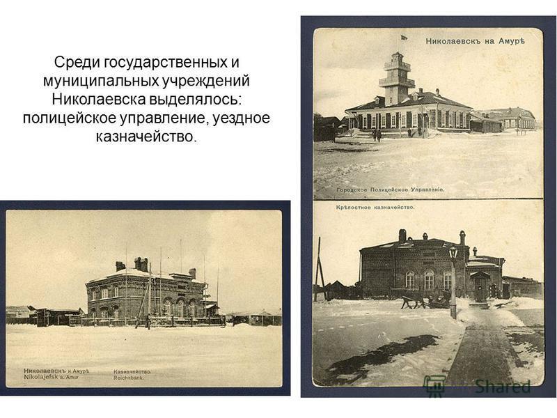 Среди государственных и муниципальных учреждений Николаевска выделялось: полицейское управление, уездное казначейство.