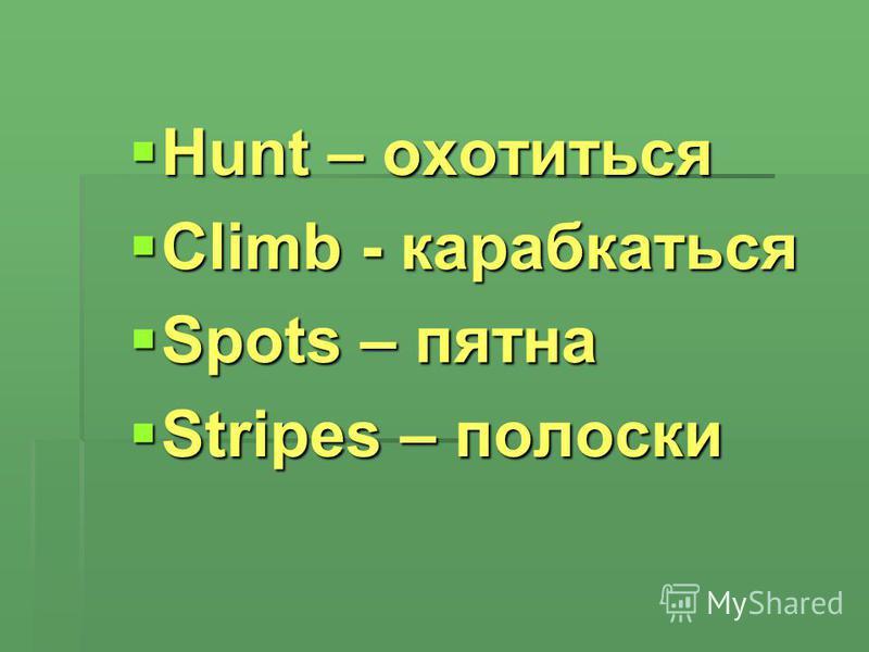 Hunt – охотиться Hunt – охотиться Climb - карабкаться Climb - карабкаться Spots – пятна Spots – пятна Stripes – полоски Stripes – полоски