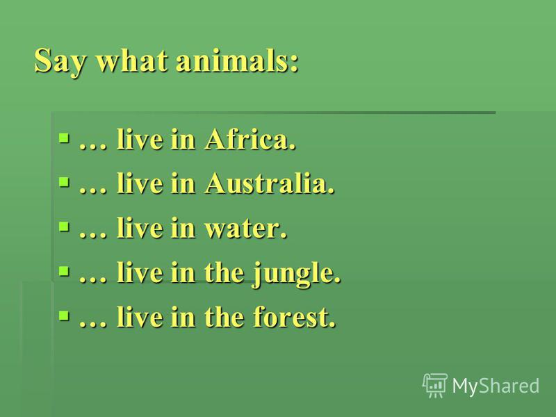 Say what animals: … live in Africa. … live in Africa. … live in Australia. … live in Australia. … live in water. … live in water. … live in the jungle. … live in the jungle. … live in the forest. … live in the forest.