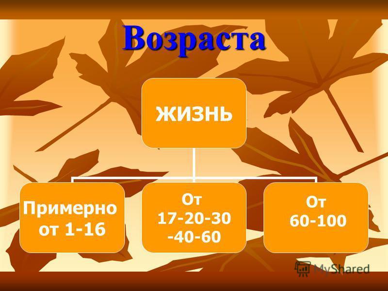 Возраста ЖИЗНЬ Примерно от 1-16 От 17-20-30 -40-60 От 60-100