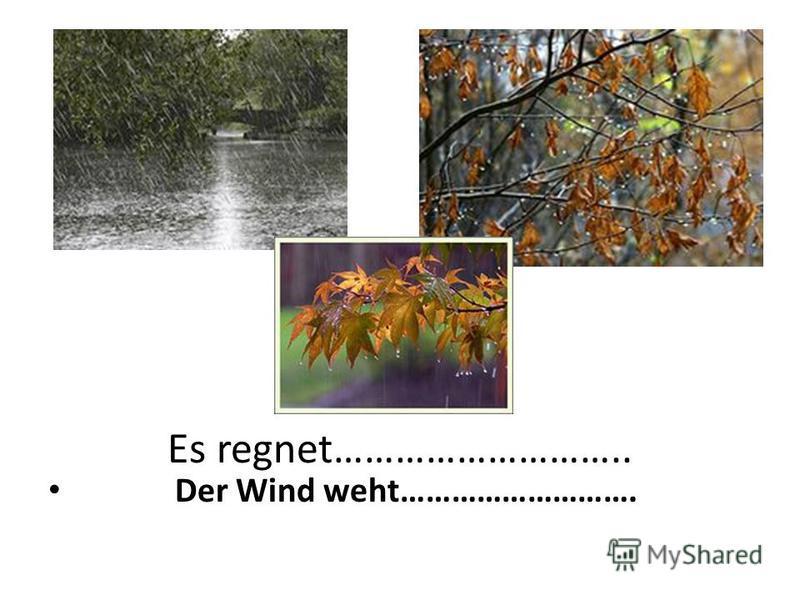 Es regnet……………………….. Der Wind weht……………………….