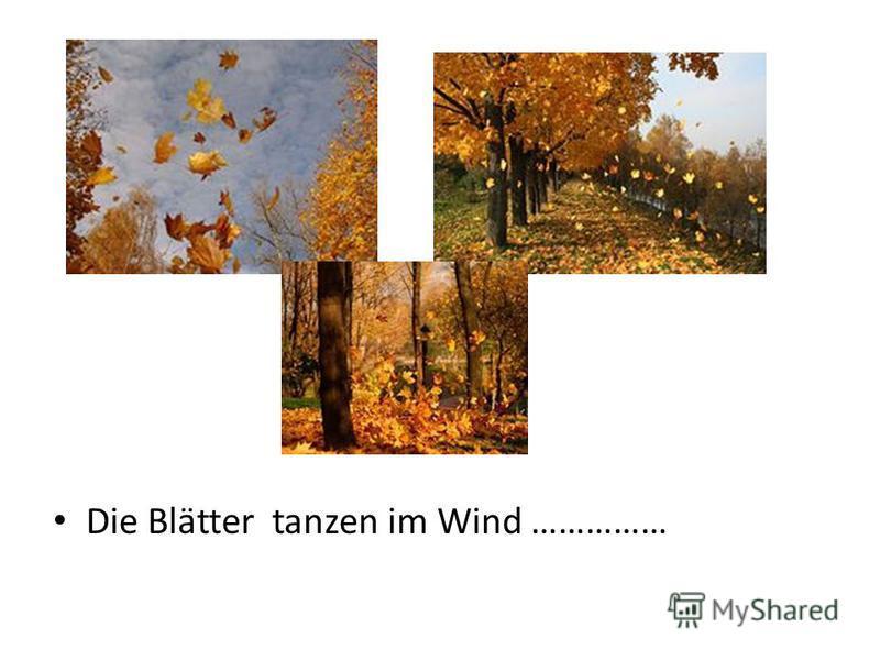 Die Blätter tanzen im Wind ……………