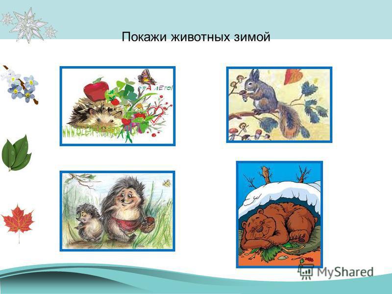 Покажи животных зимой