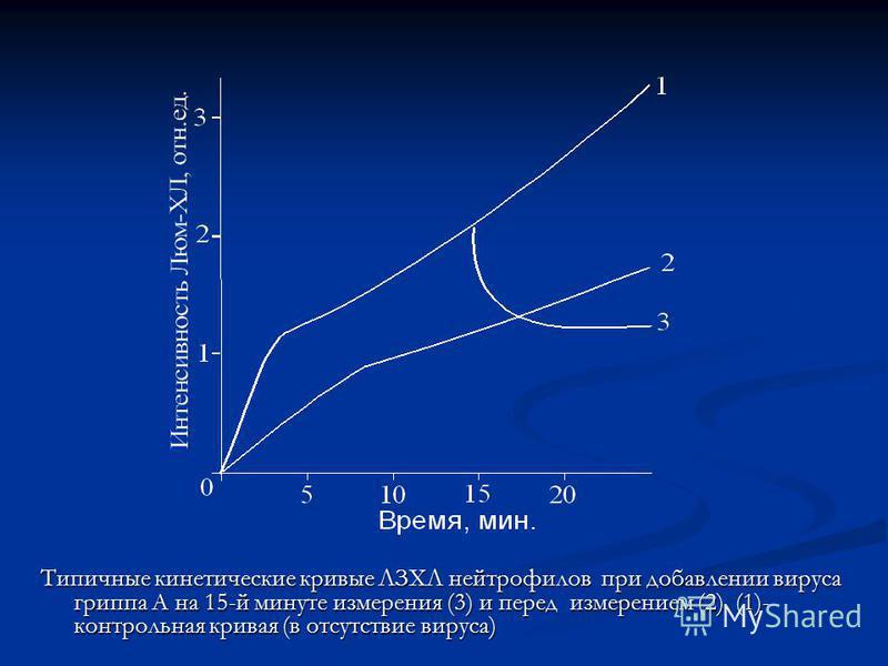 Типичные кинетические кривые ЛЗХЛ нейтрофилов при добавлении вируса гриппа А на 15-й минуте измерения (3) и перед измерением (2). (1)- контрольная кривая (в отсутствие вируса)
