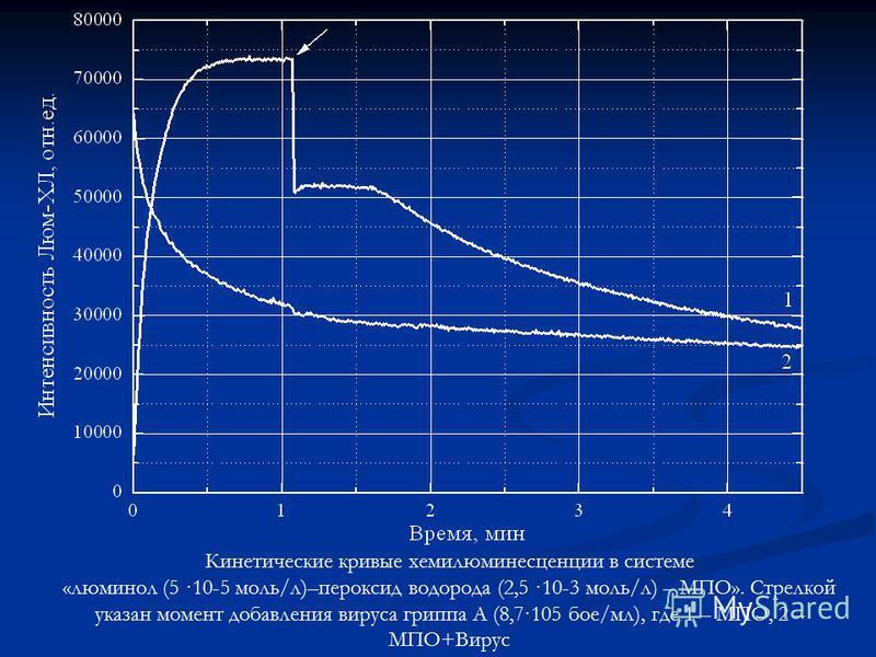 Кинетические кривые хемилюминесценции в системе «люминол (5 ·10-5 моль/л)–пероксид водорода (2,5 ·10-3 моль/л) – МПО». Стрелкой указан момент добавления вируса гриппа А (8,7·105 бое/мл), где 1 – МПО, 2 – МПО+Вирус