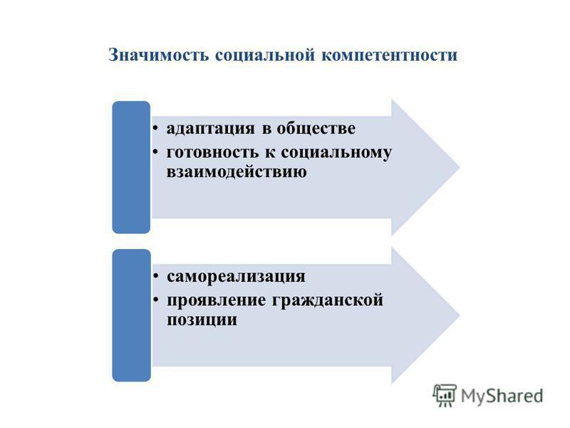 Значимость социальной компетентности адаптация в обществе готовность к социальному взаимодействию самореализация проявление гражданской позиции