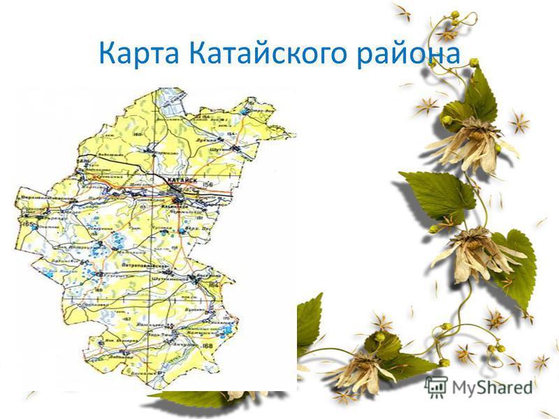 Карта Катайского района