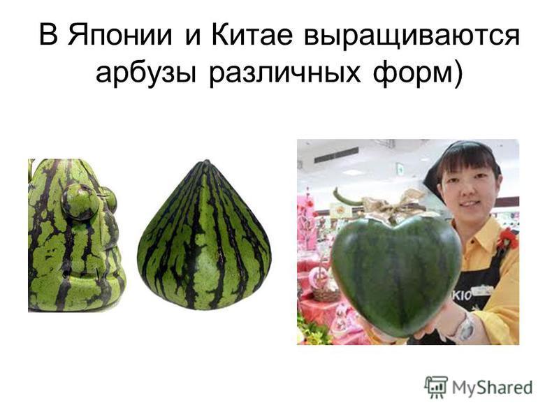 В Японии и Китае выращиваются арбузы различных форм)