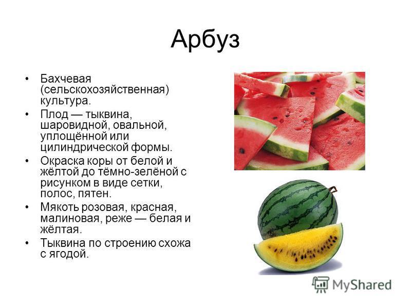 Арбуз Бахчевая (сельскохозяйственная) культура. Плод тыквина, шаровидной, овальной, уплощённой или цилиндрической формы. Окраска коры от белой и жёлтой до тёмно-зелёной с рисунком в виде сетки, полос, пятен. Мякоть розовая, красная, малиновая, реже б