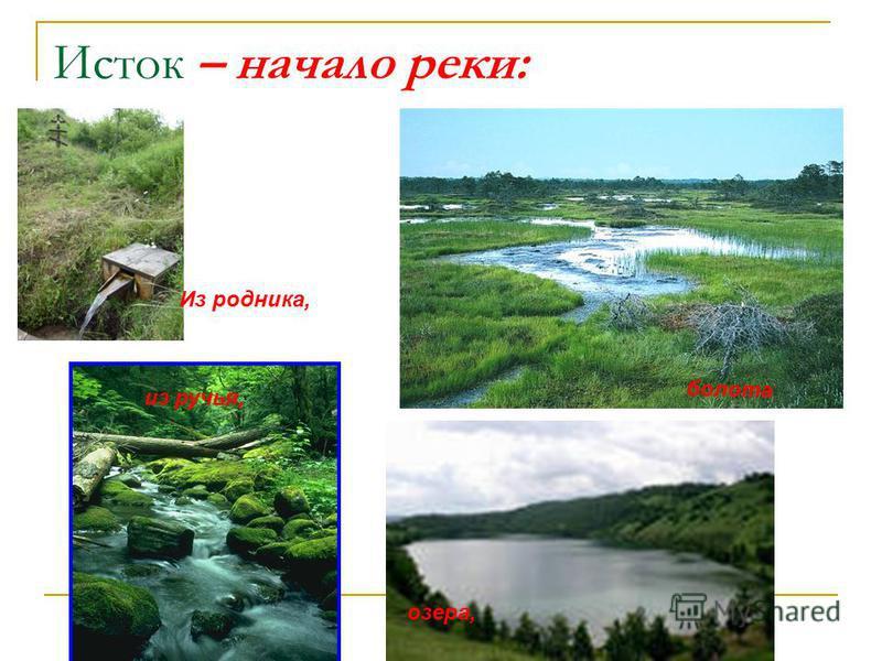 Исток – начало реки: из ручья, болота озера, Из родника,