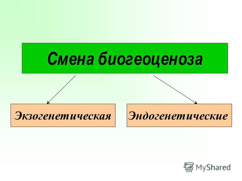 Смена биогеоценоза Экзогенетическая Эндогенетические