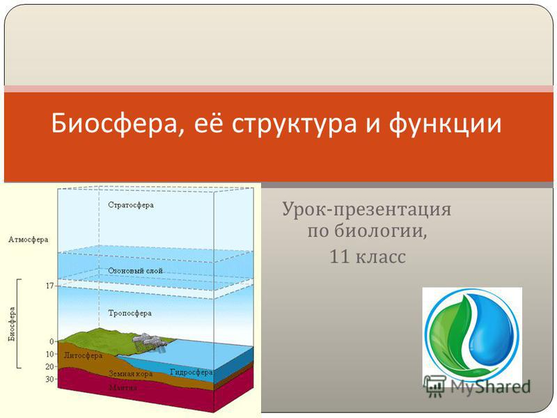 Урок - презентация по биологии, 11 класс Биосфера, её структура и функции