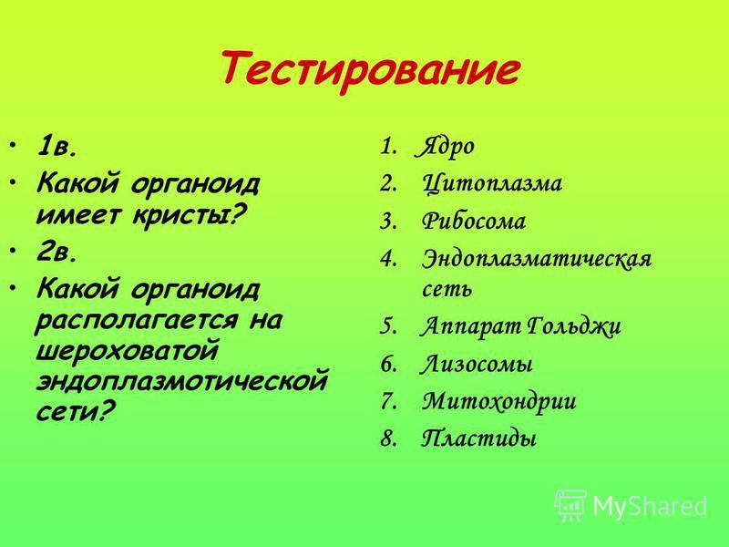 Тестирование 1 в. Какой органоид имеет кристы? 2 в. Какой органоид располагается на шероховатой эндоплазматической сети? 1. Ядро 2. Цитоплазма 3. Рибосома 4. Эндоплазматическая сеть 5. Аппарат Гольджи 6. Лизосомы 7. Митохондрии 8.Пластиды