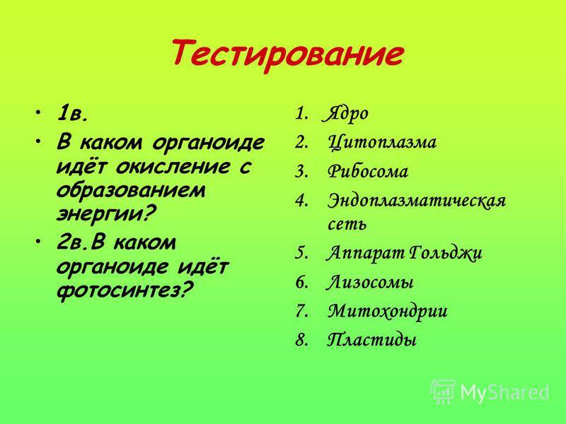 Тестирование 1 в. В каком органоиде идёт окисление с образованием энергии? 2 в.В каком органоиде идёт фотосинтез? 1. Ядро 2. Цитоплазма 3. Рибосома 4. Эндоплазматическая сеть 5. Аппарат Гольджи 6. Лизосомы 7. Митохондрии 8.Пластиды