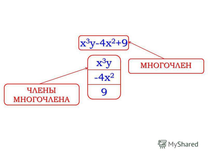 x 3 y-4x 2 +9 x3yx3yx3yx3y -4x 2 9 МНОГОЧЛЕН ЧЛЕНЫ МНОГОЧЛЕНА