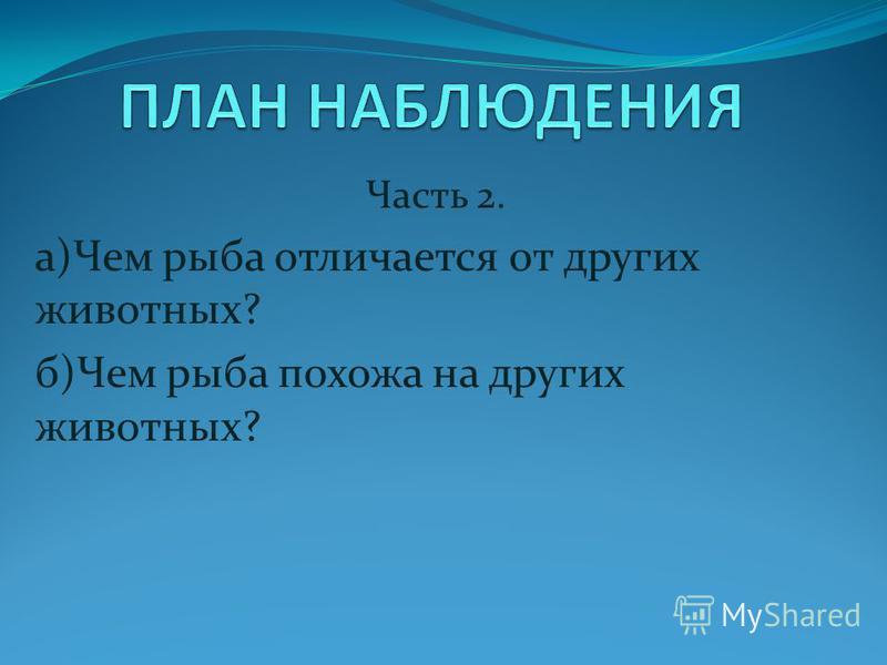 Часть 2. а)Чем рыба отличается от других животных? б)Чем рыба похожа на других животных?
