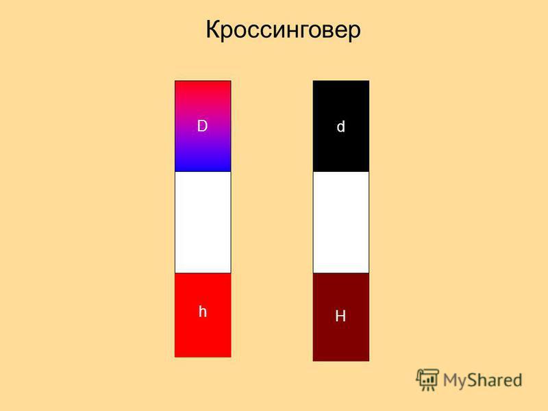 D h Кроссинговер d H
