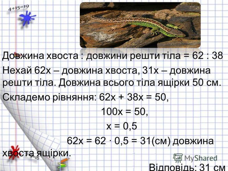 Довжина хвоста : довжини решти тіла = 62 : 38 Нехай 62х – довжина хвоста, 31х – довжина решти тіла. Довжина всього тіла ящірки 50 см. Складемо рівняння: 62х + 38х = 50, 100х = 50, х = 0,5 62х = 62 · 0,5 = 31(см) довжина хвоста ящірки. Відповідь: 31 с