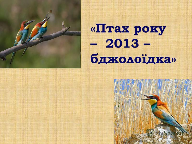 «Птах року – 2013 – бджолоїдка»