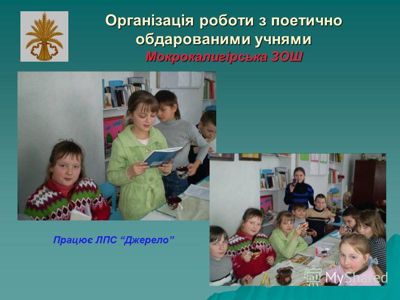 Організація роботи з поетично обдарованими учнями Мокрокалигірська ЗОШ Працює ЛПС Джерело