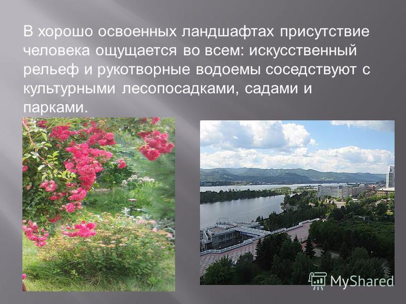 В хорошо освоенных ландшафтах присутствие человека ощущается во всем: искусственный рельеф и рукотворные водоемы соседствуют с культурными лесопосадками, садами и парками.