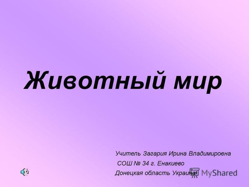 Животный мир Учитель Загария Ирина Владимировна СОШ 34 г. Енакиево Донецкая область Украина