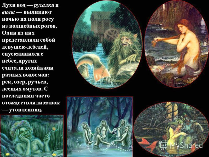 Духи вод русалки и вилы выливают ночью на поля росу из волшебных рогов. Одни из них представляли собой девушек-лебедей, спускавшихся с небес, других считали хозяйками разных водоемов: рек, озер, ручьев, лесных омутов. С последними часто отождествляли