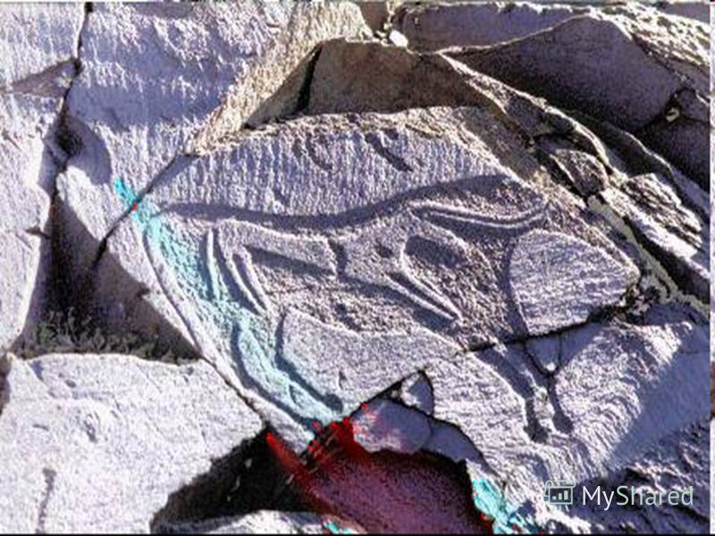 Оленей показывали чуткими и настороженными, коней быстрыми и стремительными, мамонтов массивными, тяжелыми, с высоким выпуклым затылком, Часто изображали зверей, пораженных копьями, истекающих кровью: например, израненного камнями медведя, из пасти к