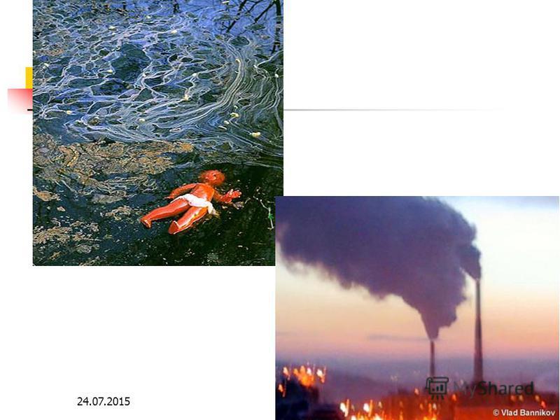 7 Сегодня экологическую ситуацию в мире можно охарактеризовать как близкую к критической. Среди глобальных экологических проблем можно отметить следующие: - уничтожены и продолжают уничтожаться тысячи видов растений и животных; - в значительной мере