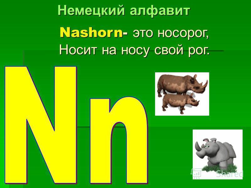 Nashorn- это носорог, Носит на носу свой рог.
