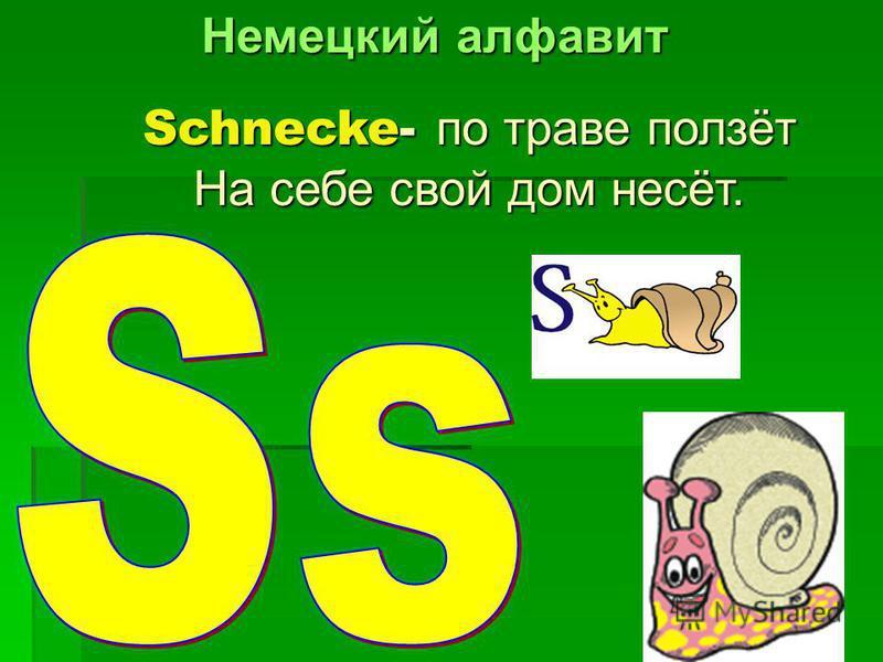 Schnecke- по траве ползёт На себе свой дом несёт.