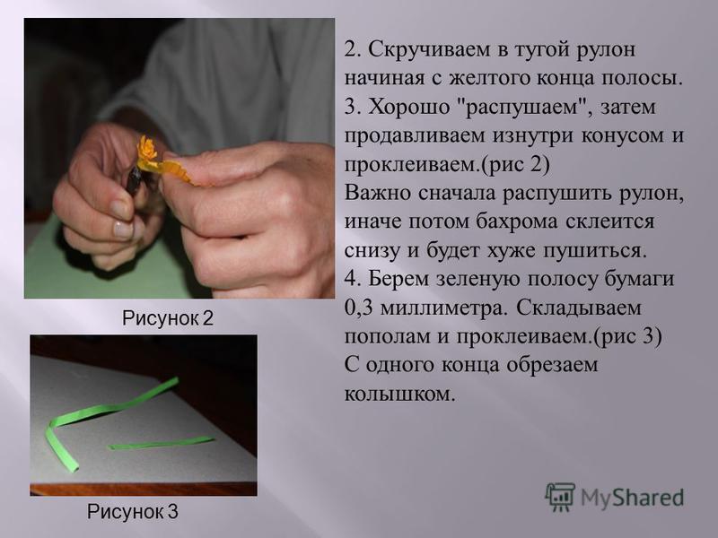 2. Скручиваем в тугой рулон начиная с желтого конца полосы. 3. Хорошо