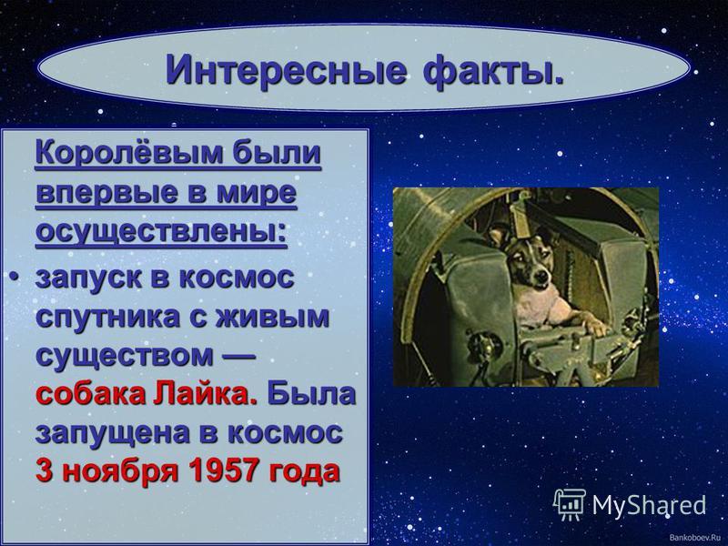 Королёвым были впервые в мире осуществлены: запуск в космос спутника с живым существом собака Лайка. Была запущена в космос 3 ноября 1957 года запуск в космос спутника с живым существом собака Лайка. Была запущена в космос 3 ноября 1957 года Интересн