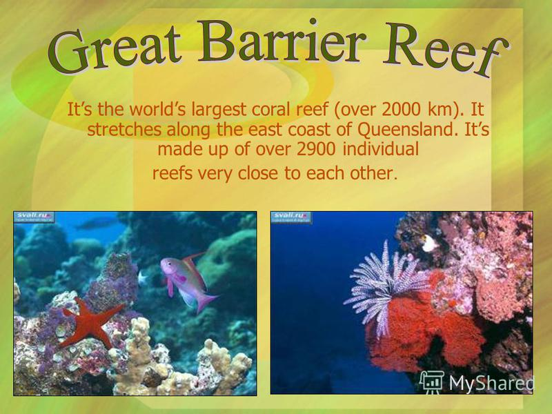 Its the worlds largest coral reef (over 2000 km). It stretches along the east coast of Queensland. Its made up of over 2900 individual reefs very close to each other.