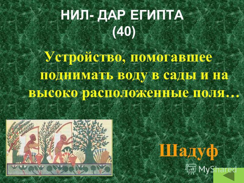 НИЛ- ДАР ЕГИПТА (30) Какие растения растут в долине Нила? Папирус, финиковые пальмы